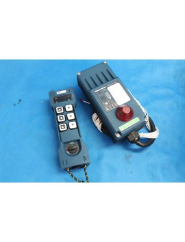 Remote radio 12v for 4 sections valve 8 buttons