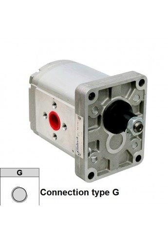 Hydraulic pump Group 2 Galtech  4 cc rev