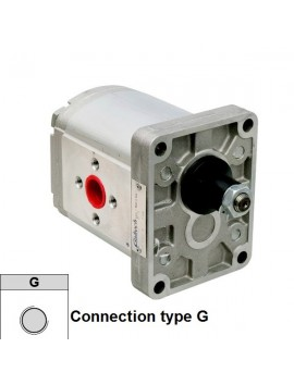 Hydraulic pump Group 2 Galtech  4 cc rev