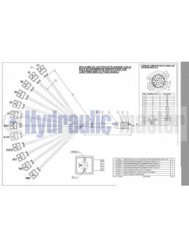 4 positions joystick 7 buttons + Monoblock Vave 5-spool hydraulic solenoid 50 l/min 13GPM 24VDC